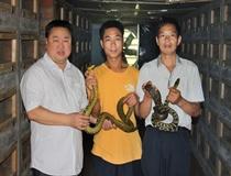 手把手教学员们抓蛇