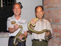 学员们正在玩耍蛇