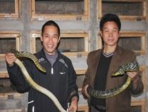 学员正在玩耍蛇