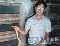 河南养蛇场成功案例-刘先生